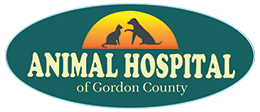Animal Hospital of Gordon County